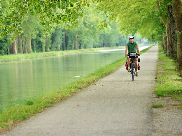Bike ride under the plane trees of the Garonne Canal